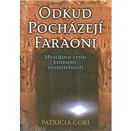 Odkud pocházejí faraoni: Mystikova cesta branami nesmrtelnosti - Kniha