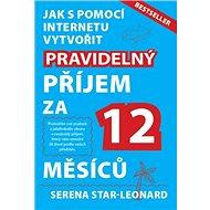 Jak s pomocí internetu vytvořit pravidelný příjem za 12 měsíců: Bestseller - Kniha