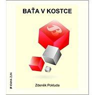 Baťa v kostce - Kniha