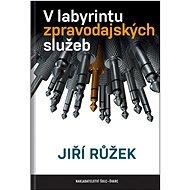 V labyrintu zpravodajských služeb - Kniha