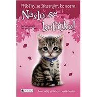 Našlo se koťátko!: Příběhy se šťastným koncem - Kniha