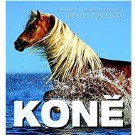 Koně - Kniha