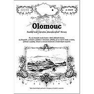 """Olomouc: Zaniklý hrad v bývalém """"hlavním městě"""" Moravy - Kniha"""