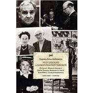 Mezi emigrací a koncentračním táborem - Kniha