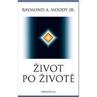 Život po životě - Kniha