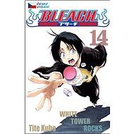 Bleach 14: White Tower Rocks