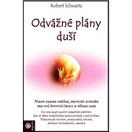Odvážné plány duší - Kniha