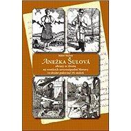 Anežka Šulová: Obrazy ze života na vesnicích severozápadní Moravy ve druhé polovině 19.století - Kniha