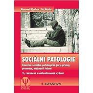 Sociální patologie: Závažné sociálně patologické jevy, příčiny, prevence, možnosti řešení - Kniha