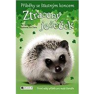 Ztracený ježeček: Příběhy se šťastným koncem - Kniha