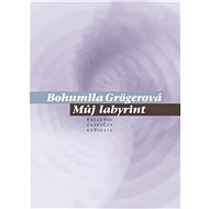 Můj labyrint - Kniha