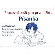 Písanka Pracovní sešit pro první třídu - Kniha