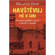 Navštěvuj mě v snu: Pravdivý příběh o lásce a přežití v gulagu - Kniha