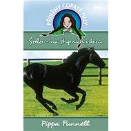 Příběhy copaté Tilly Solo – na stupních vítězů - Kniha