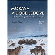 Morava v době ledové: Prostředí posledního glaciálu a metody jeho poznávání - Kniha