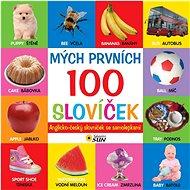 Mých prvních 100 slovíček: Anglicko-český slovníček se samolepkami - Kniha