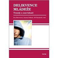 Delikvence mládeže: Trendy a souvislosti - Kniha