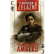 Devět princů Amberu - Kniha