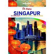 Singapur do kapsy - Kniha