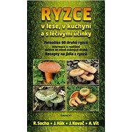 Ryzce: v lese, v kuchyni a s léčivými účinky - Kniha