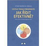 Cesta k trvalé prosperitě: Jak řídit efektivně? - Kniha