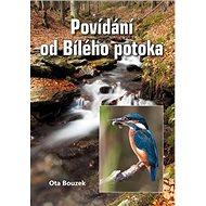 Povídání od Bílého potoka - Kniha