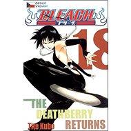 Bleach 18: The Deathberry Returns - Kniha