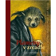 Plameny v zrcadle: francouzské básně v próze - Kniha