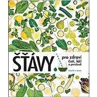 Šťávy pro zdraví: čistí, léčí a povzbudí - Kniha