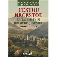 Tajemné stezky Cestou necestou: za tajemstvím Hrubého Jeseníku - Kniha