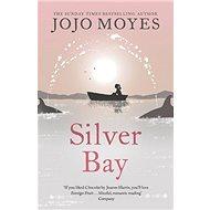 Silver Bay - Kniha