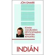 Indián: Román z bouřlivého dětství bývalého primátora Reykjavíku - Kniha