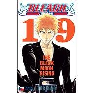 Bleach 19: The Black Moon Rising