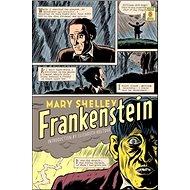 Frankenstein - Kniha