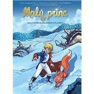 Malý princ a Aškabarova planeta: Na motivy Antoina de Saint-Exupéryho
