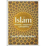 Islám: Historie, současnost a persektivy - Kniha