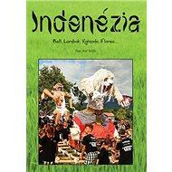 Indonézia: Bali, Lombok, Komodo, Flores... - Kniha