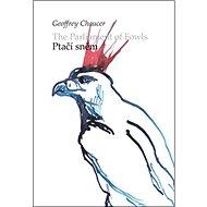 Ptačí sněm/ The parliament of Fowls - Kniha