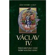 Václav IV. Tajná kronika velké doby malého krále - Kniha