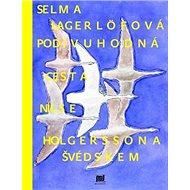 Podivuhodná cesta Nielse Holgerssona Švédskem - Kniha