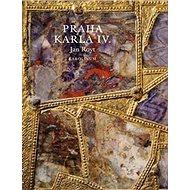 Praha Karla IV. - Kniha