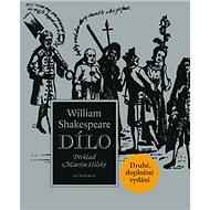 Dílo - Kniha