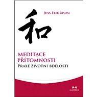 Meditace přítomnosti: Praxe životní bdělosti - Kniha