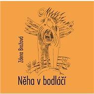 Něha v bodláčí - Kniha