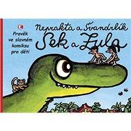 Sek a Zula - Kniha