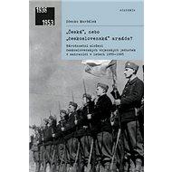 Česká, nebo československá armáda?: Národnostní složení československých vojenských jednotek v zahra - Kniha