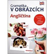 Gramatika v obrázcích Angličtina - Kniha