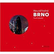 Neuvěřitelné Brno - Kniha