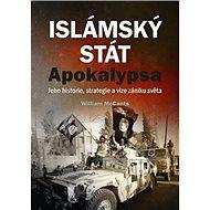 Islámský stát Apokalypsa: Jeho historie, strategie a vize zániku světa - Kniha