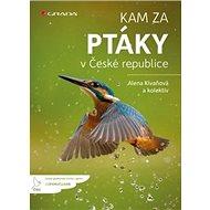 Kam za ptáky: v České republice - Kniha